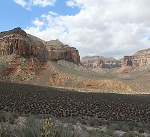 Shadown and Light in the Canyon by CanDoNgandu