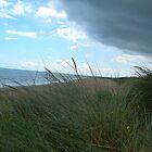irish shores by Emmett  Cathcart