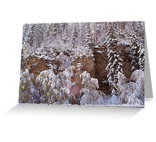 Snow Scene in Spearfish Canyon Greeting Card