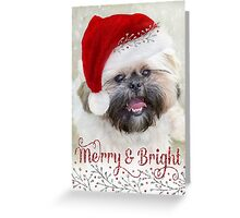 Cute Christmas Card - Shih Tzu Dog in Santa Hat Greeting Card