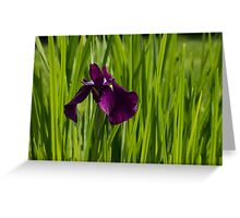 Sunny Green and Purple Summer Greeting Card