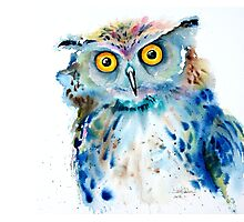 """Owl"" Photographic Print"