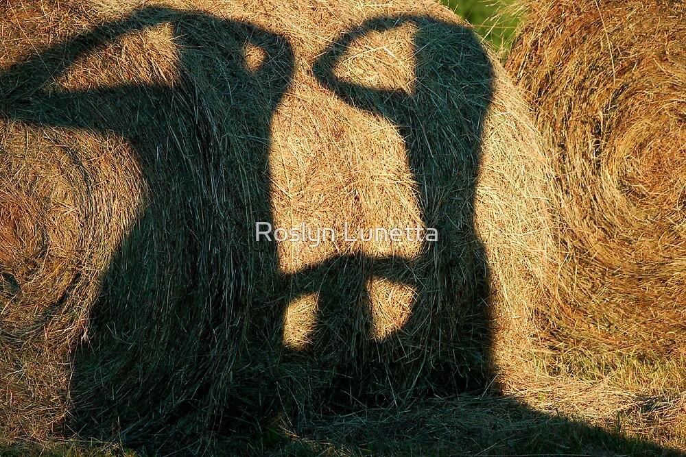 hay shadow play by Roslyn Lunetta