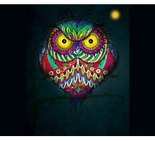 """""""Angry Owl by Night"""" Photographic Print"""