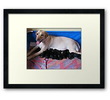 Puppies!! Framed Print