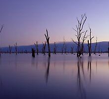 Lake Mulwala, NSW/Victoria by Matt  Lauder