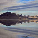 Silver Mountains by Gene Praag