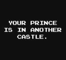 Your Prince is in Another Castle by TheShirtYurt