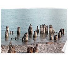 Old Pilings Port Huron Michigan Poster
