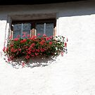 White Wall Window by phil decocco