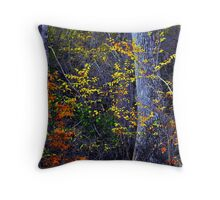 Rare colors of the Santee... Throw Pillow
