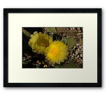 Sol y Sombra - Sun and Shade Framed Print