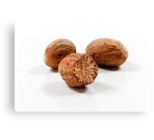 Nutmeg Canvas Print