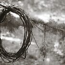 Grapevine Wreath by FaireUnVoeu