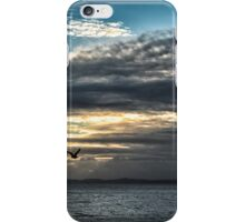WINTER SKY iPhone Case/Skin