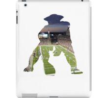 New England Patriots Stadium Color iPad Case/Skin