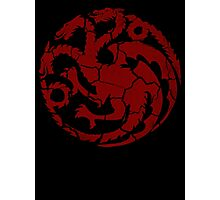 House Targaryen Worn Photographic Print