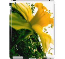 Nature - Plant 02 iPad Case/Skin