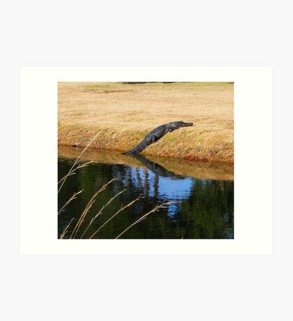 The Gator Art Print