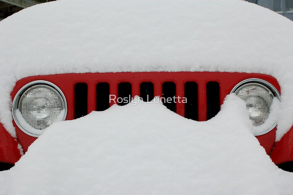 Jeep Grill by Roslyn Lunetta