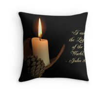 Light in the Darkness Series 4 Throw Pillow