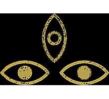 Three Eyed Raven Photographic Print