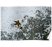 The Beauty of Autumn Rains Poster