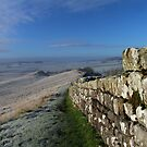 Frosty Morning on Hadrian's Wall by HAPhotography
