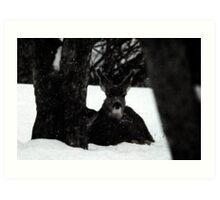 Winter Survival Art Print