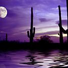 Saguaro Moon by digitalmidge