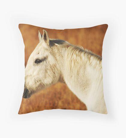 Late Autumn Glow Throw Pillow