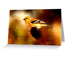 Songbird in Snowstorm Greeting Card