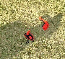 Devil Shadow on the Lawn by Elizabeth Fagan