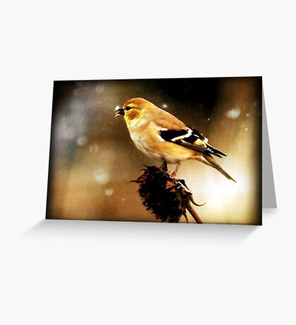 American Goldfinch Watercolor Greeting Card