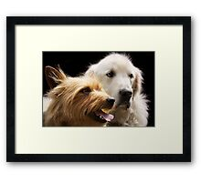 Angie and Hank Framed Print