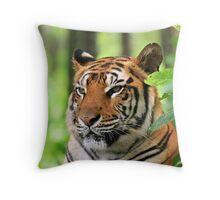 Silent Tiger Throw Pillow