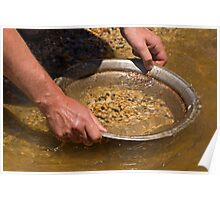 Panning for gold at Sovereign Hill Poster