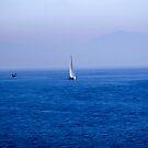 Sailing by Barbara Gordon