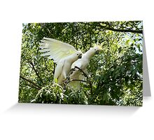 The Garden Guests Greeting Card