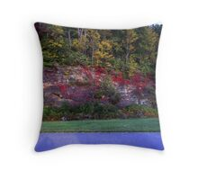 Autum On The Parkway Throw Pillow