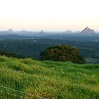 Glasshouse Mountains by sunrise by Colin Scougall