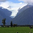 Fox Glacier by Colin Scougall