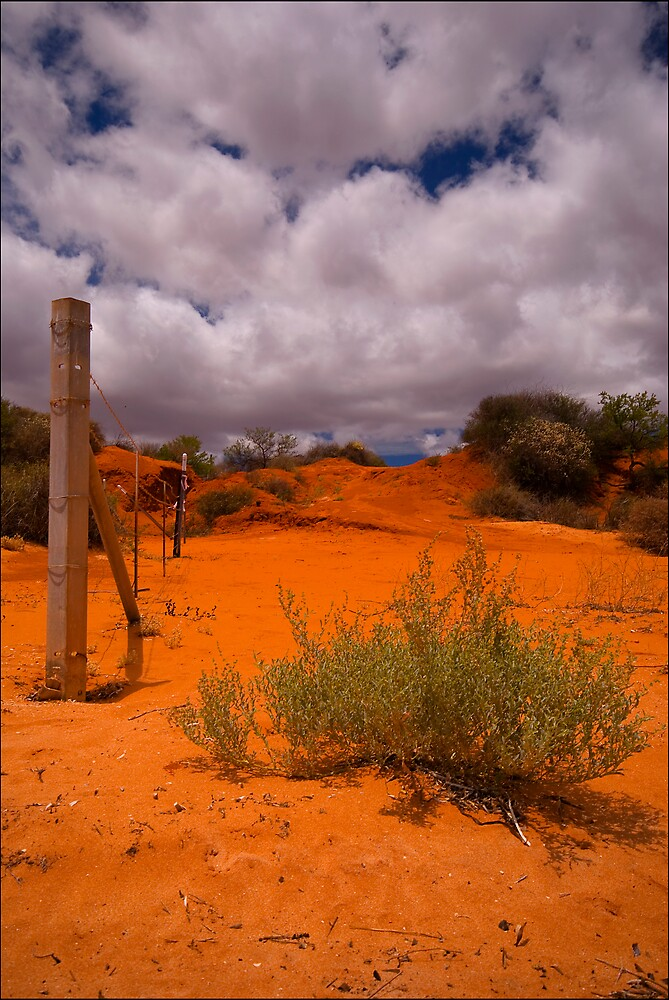 The Dunes of Monkey Mia by Damiend