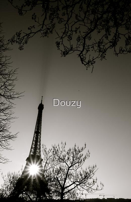 Morning Sun by Douzy