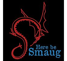 Here be Smaug - Red & Blue, for Black T-Shirt Photographic Print