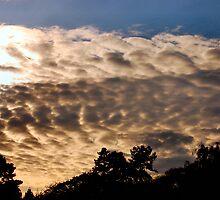 Evening Sky by Christian Salt