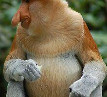 Shakespearean Monkey by ApeArt