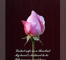 In a Rosebud by Gilberte