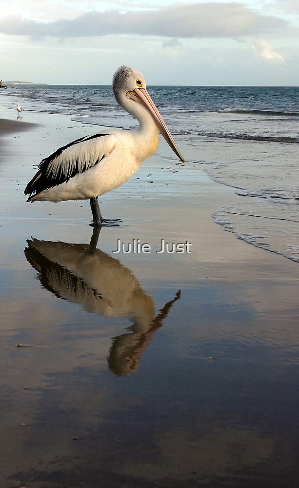 Pelican by Julie Just