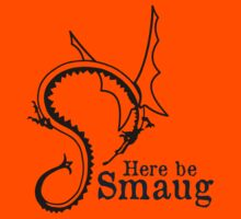 Here be Smaug - Black & Navy, for Orange T-Shirt by Mystalope